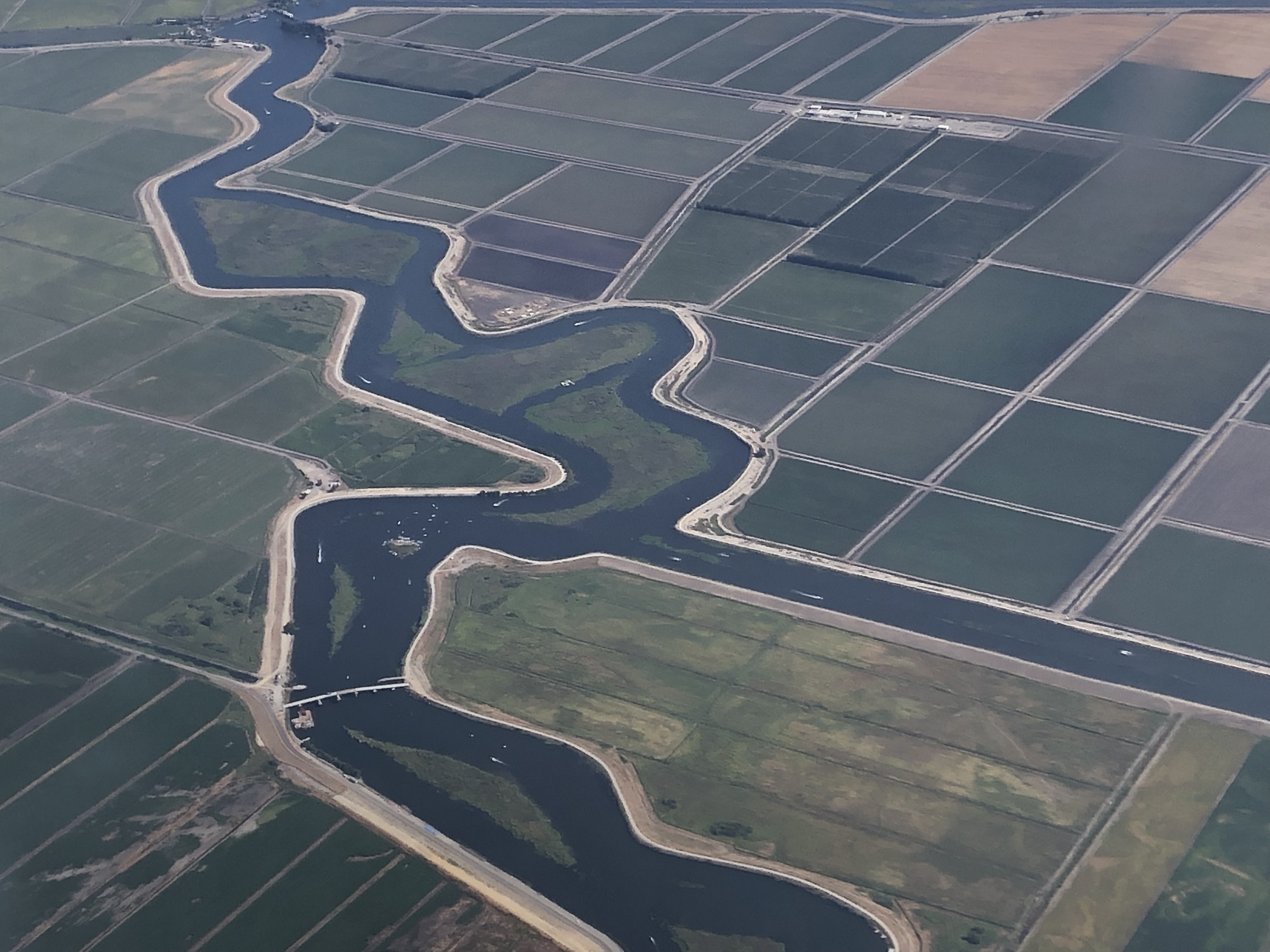 Farmland in California's Central Valley